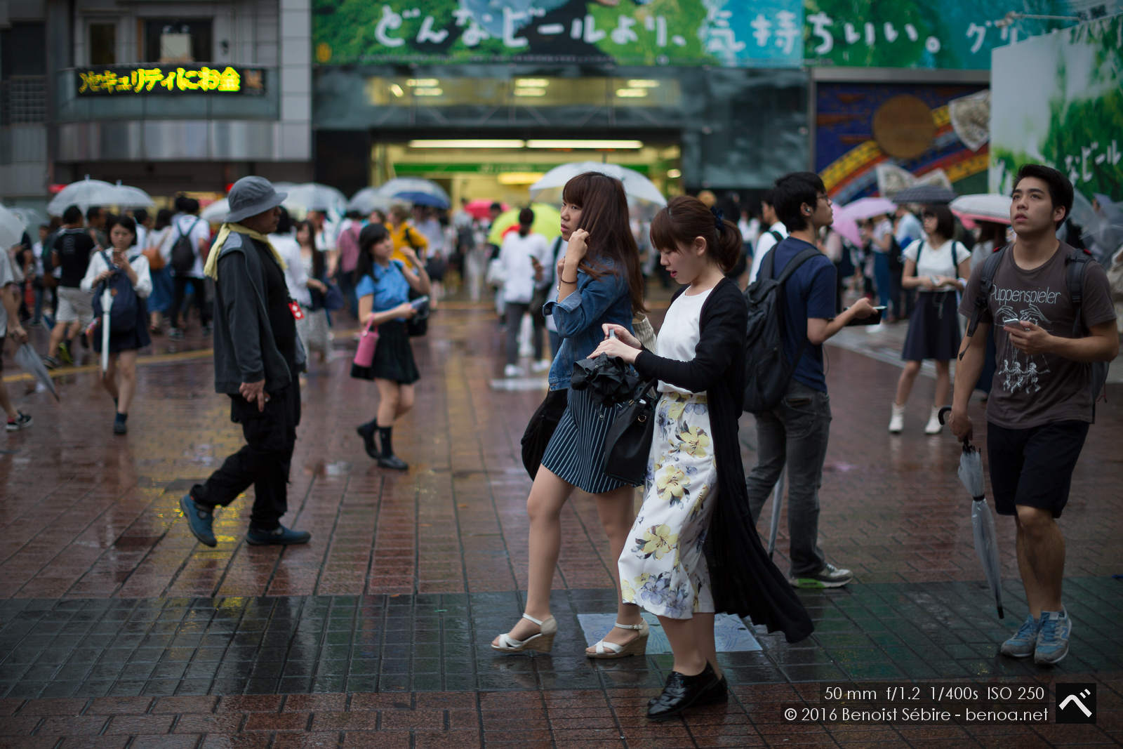 Shibuya Folks-01