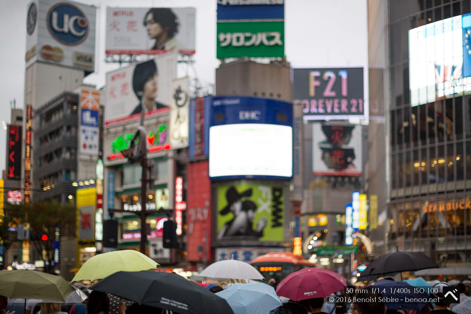 Shibuya Rain-01