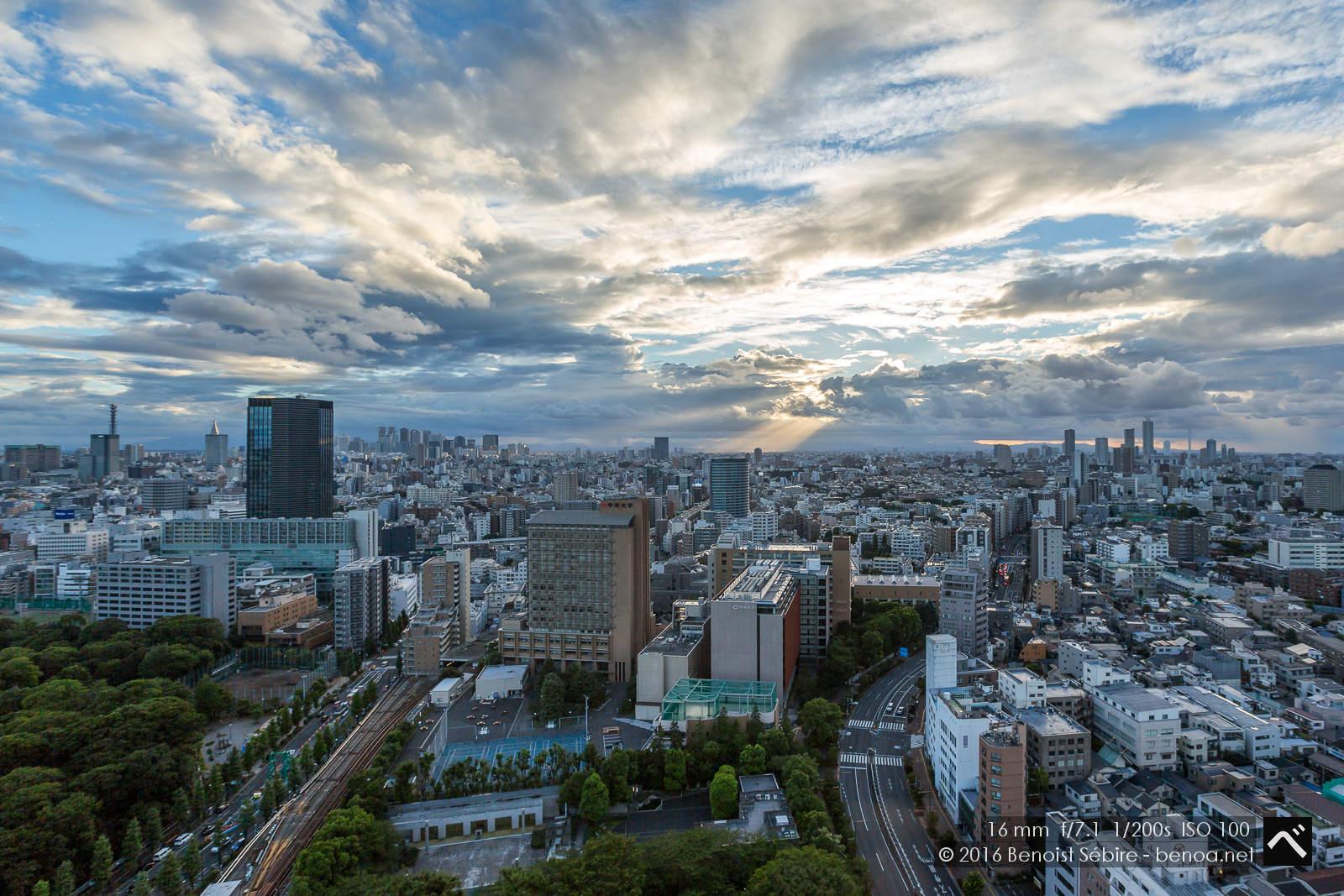 Tokyo Skies