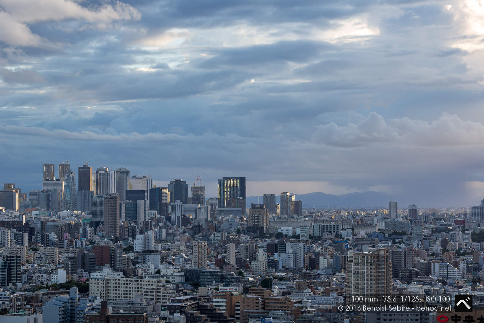 Cloudy Tokyo