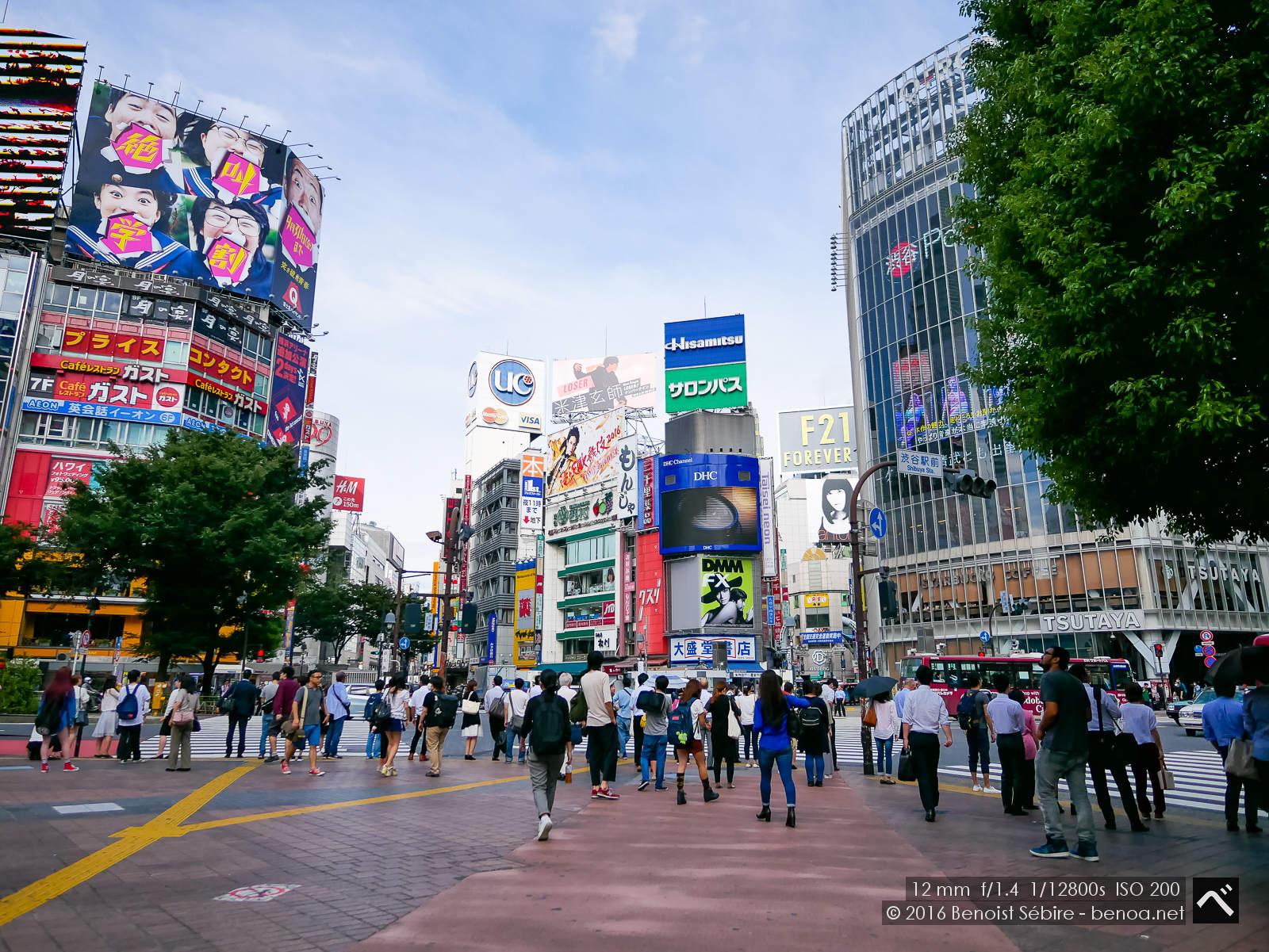 Good Morning Shibuya