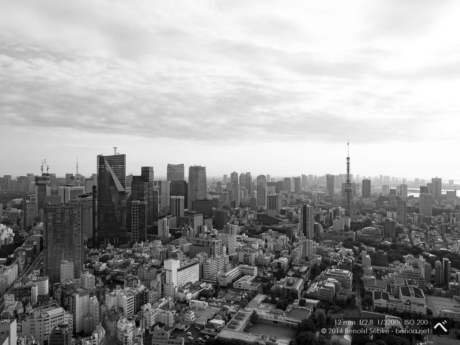 Tokyo Morning
