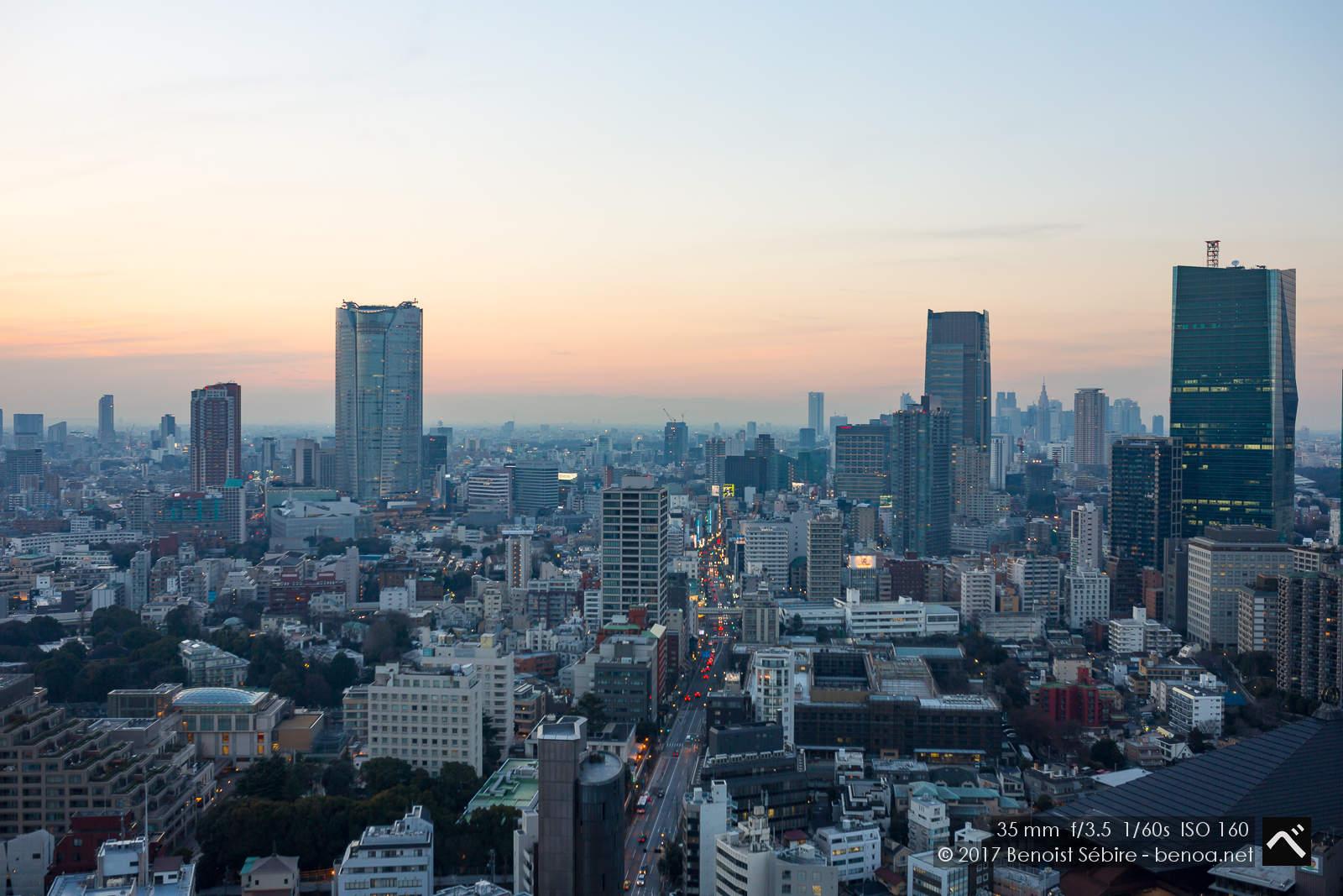 Tokyo Tower Panorama