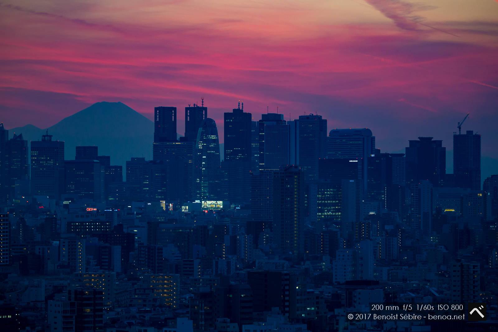 Purple Tokyo