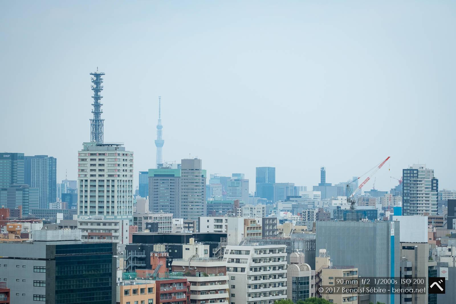 Shinjuku Landscape